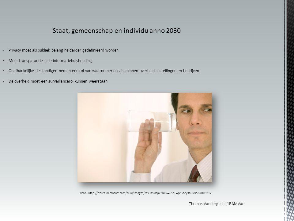 Staat, gemeenschap en individu anno 2030