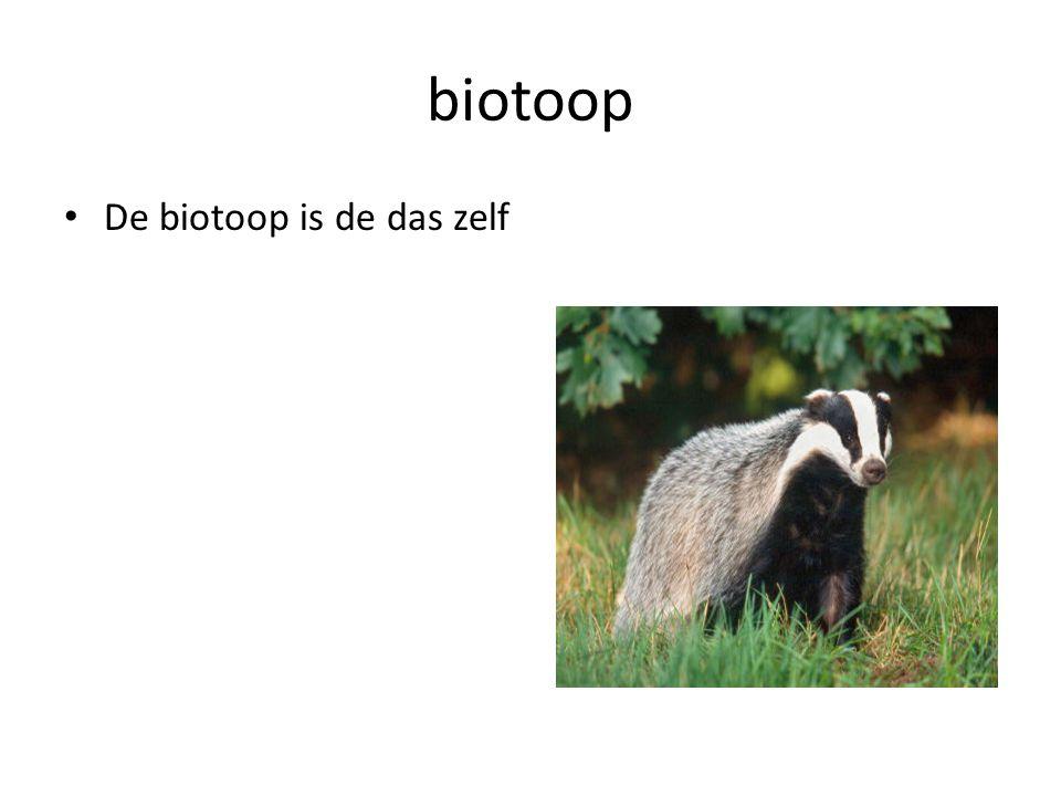 biotoop De biotoop is de das zelf