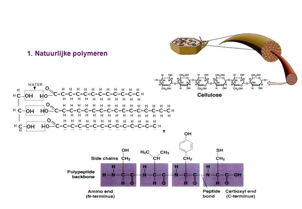 1. Natuurlijke polymeren