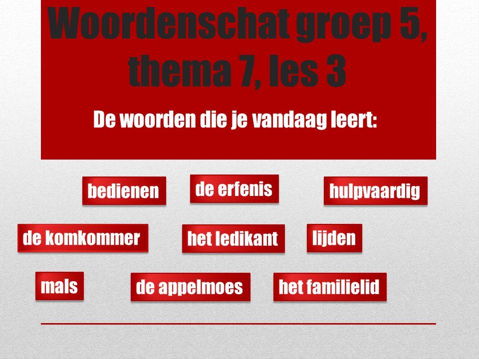 Woordenschat groep 5, thema 7, les 3