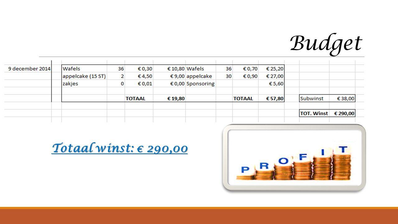 Budget Totaal winst: € 290,00