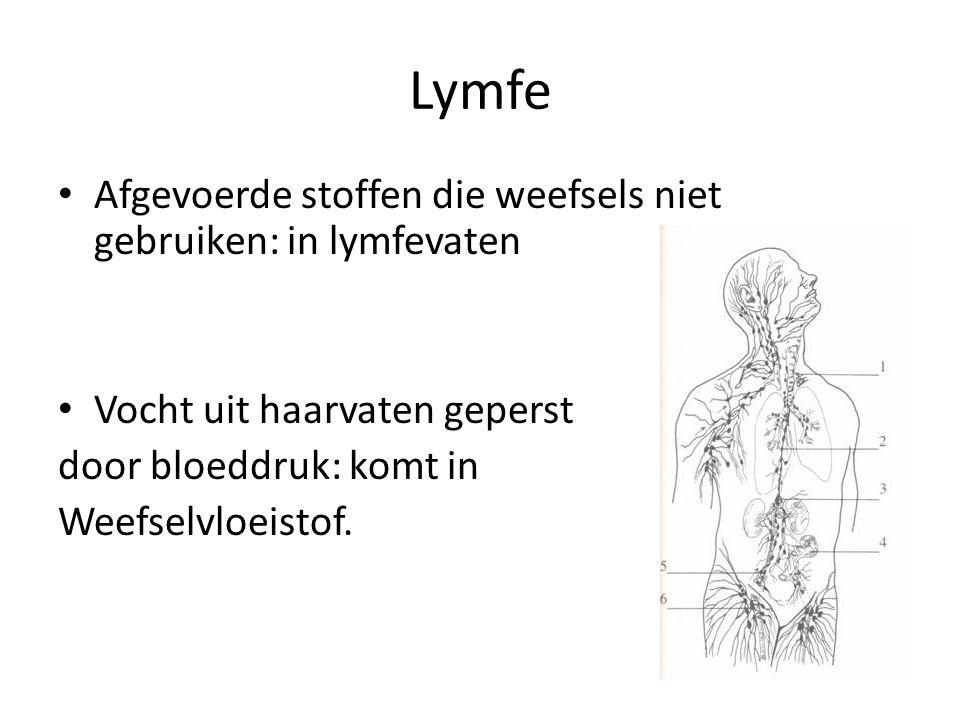 Lymfe Afgevoerde stoffen die weefsels niet gebruiken: in lymfevaten