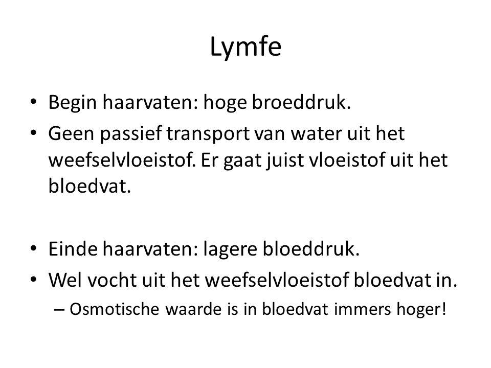Lymfe Begin haarvaten: hoge broeddruk.