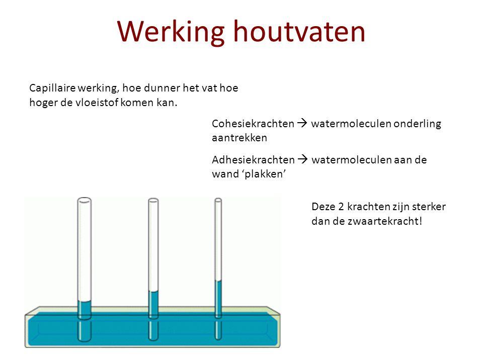 Werking houtvaten Capillaire werking, hoe dunner het vat hoe hoger de vloeistof komen kan. Cohesiekrachten  watermoleculen onderling aantrekken.