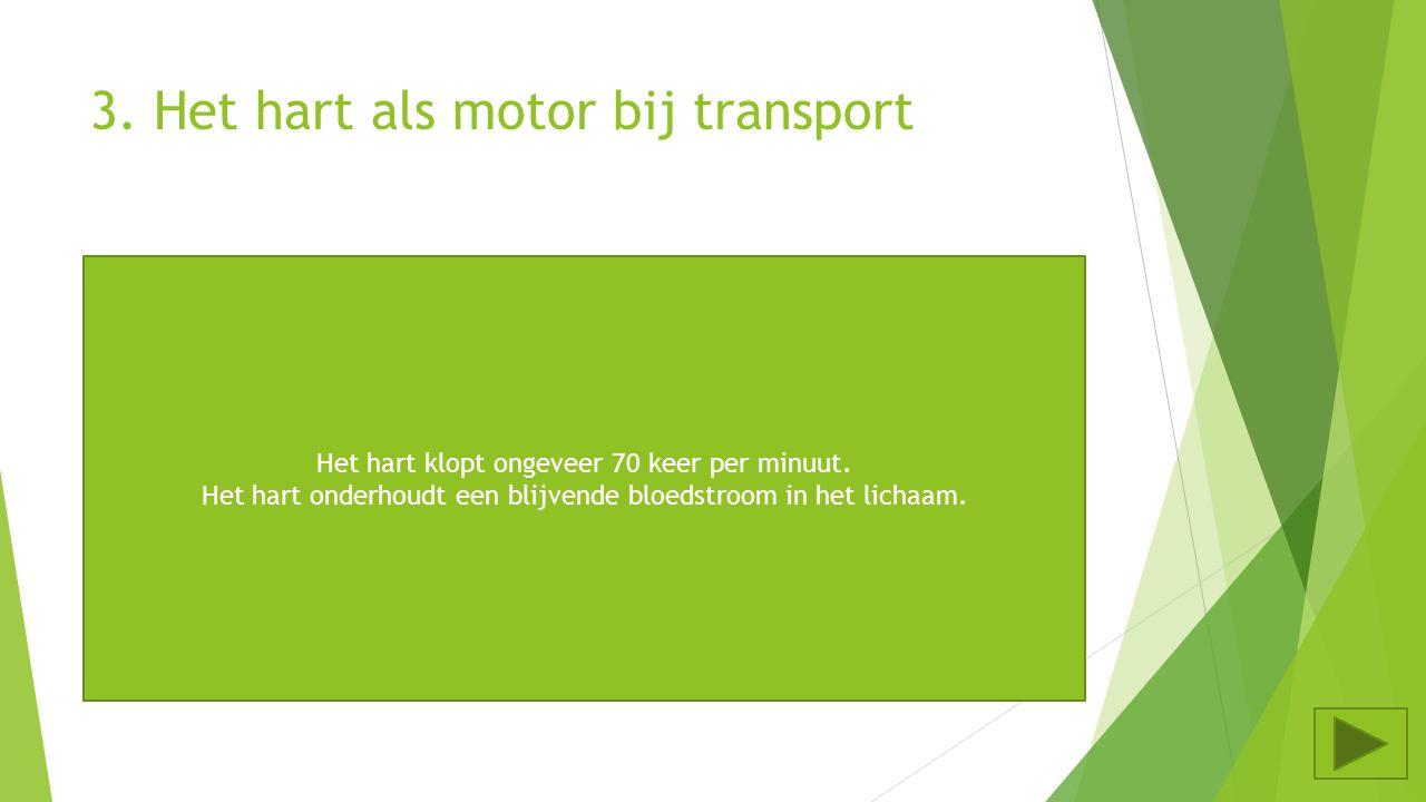 3. Het hart als motor bij transport