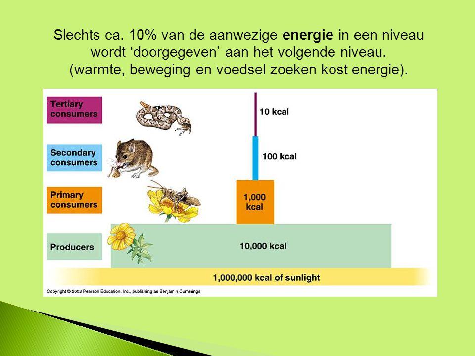 Slechts ca. 10% van de aanwezige energie in een niveau wordt 'doorgegeven' aan het volgende niveau.