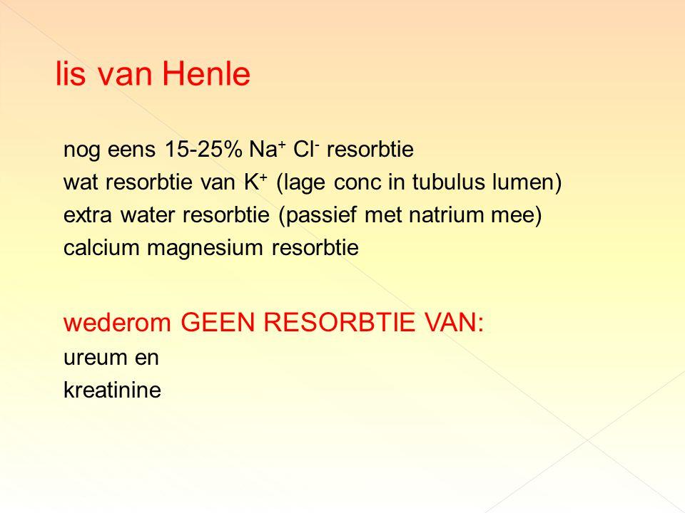 lis van Henle wederom GEEN RESORBTIE VAN:
