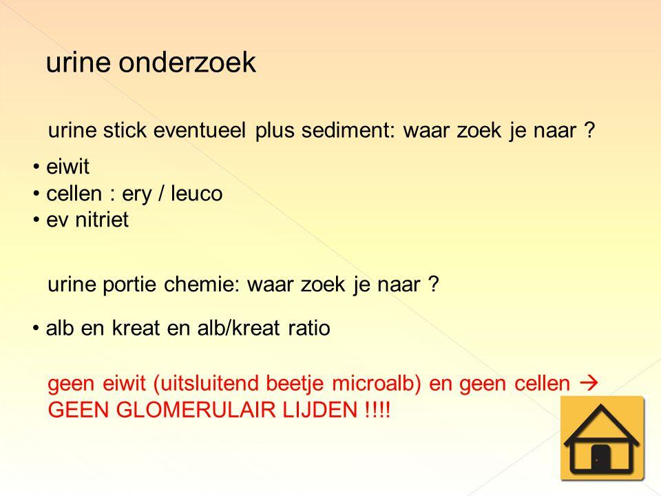 urine onderzoek urine stick eventueel plus sediment: waar zoek je naar eiwit. cellen : ery / leuco.