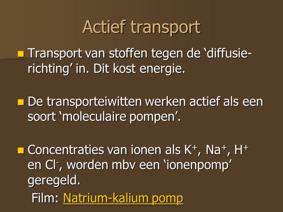 Actief transport Transport van stoffen tegen de 'diffusie-richting' in. Dit kost energie.