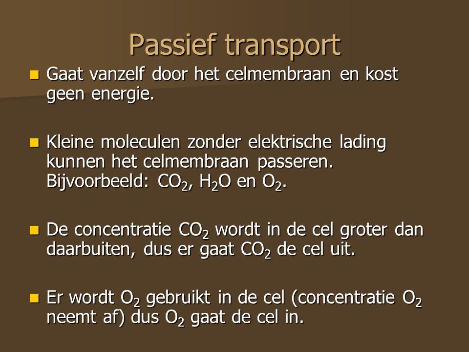 Passief transport Gaat vanzelf door het celmembraan en kost geen energie.