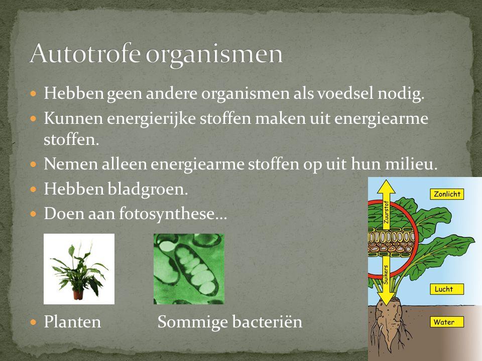 Autotrofe organismen Hebben geen andere organismen als voedsel nodig.