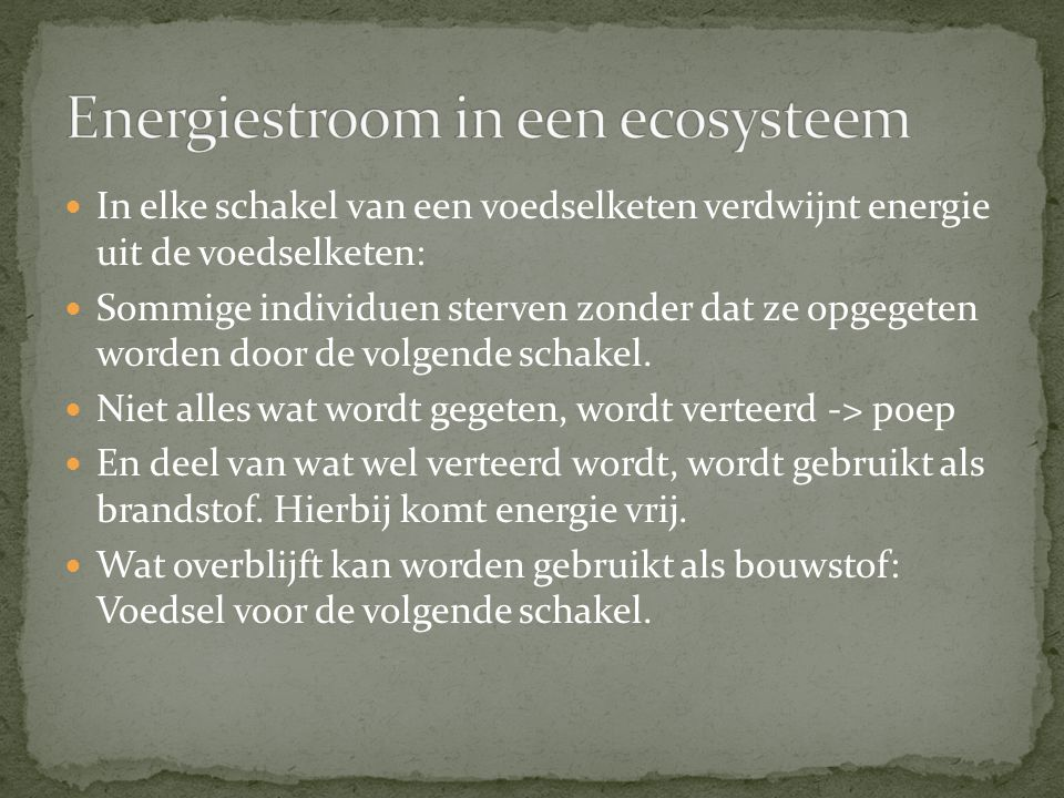 Energiestroom in een ecosysteem