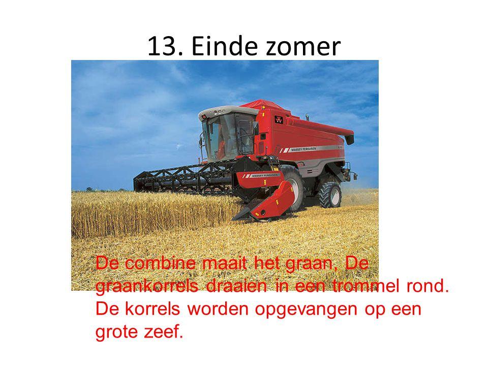 13. Einde zomer De combine maait het graan, De graankorrels draaien in een trommel rond.