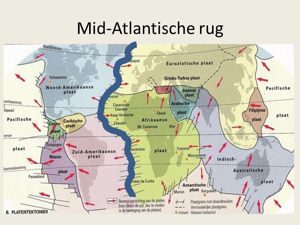 Mid-Atlantische rug