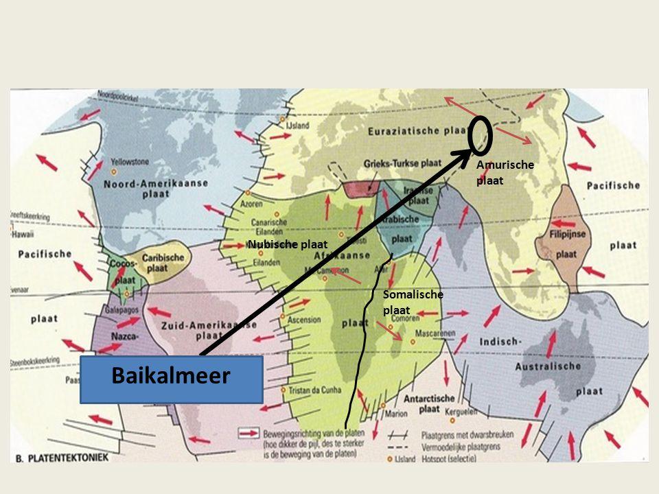 Amurische plaat Nubische plaat Somalische plaat Baikalmeer