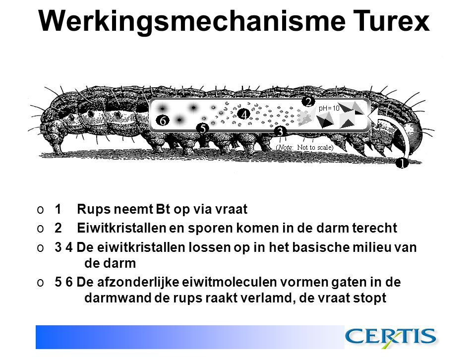 Werkingsmechanisme Turex