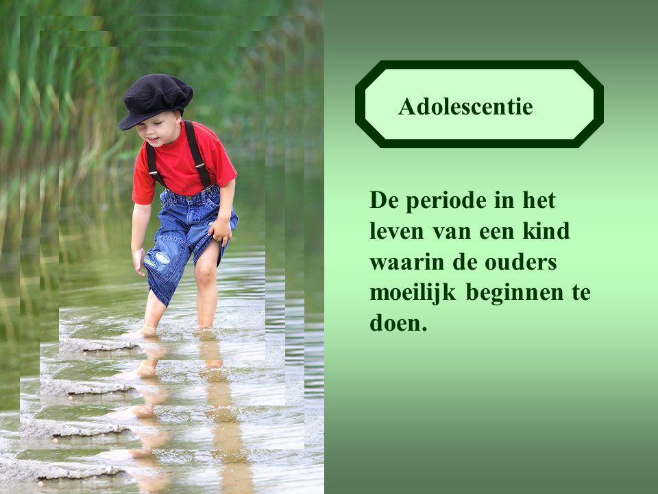 Adolescentie De periode in het leven van een kind waarin de ouders moeilijk beginnen te doen.