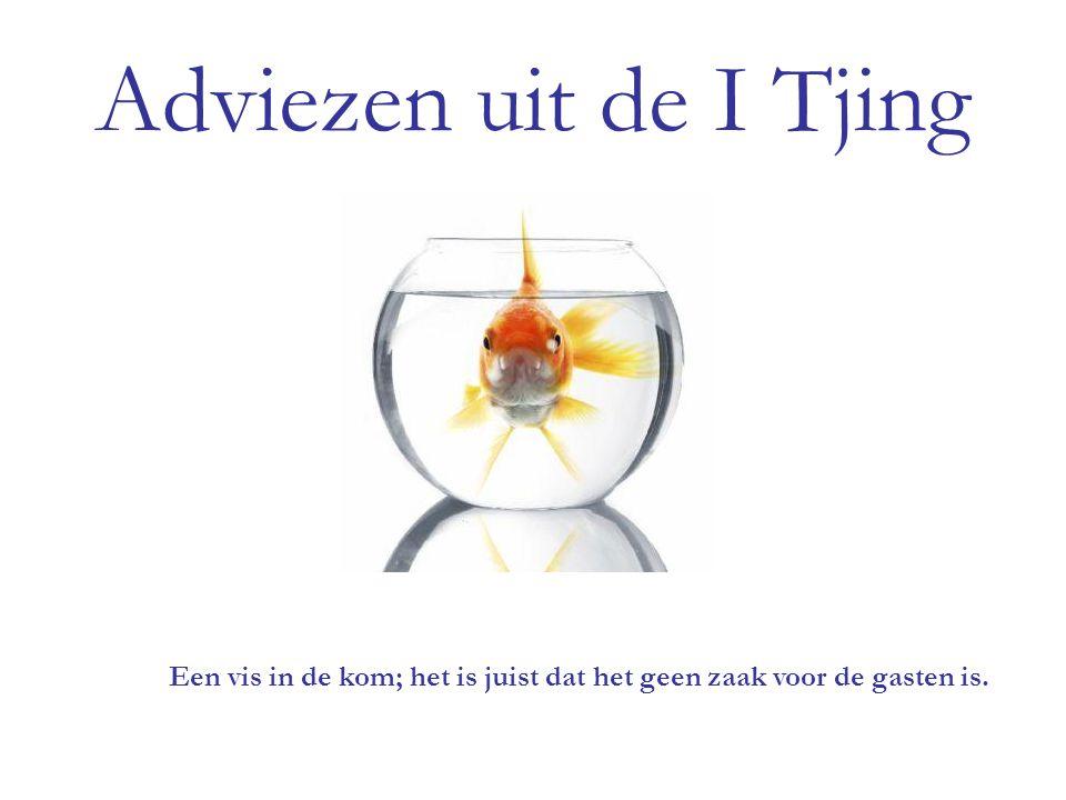 Een vis in de kom; het is juist dat het geen zaak voor de gasten is.