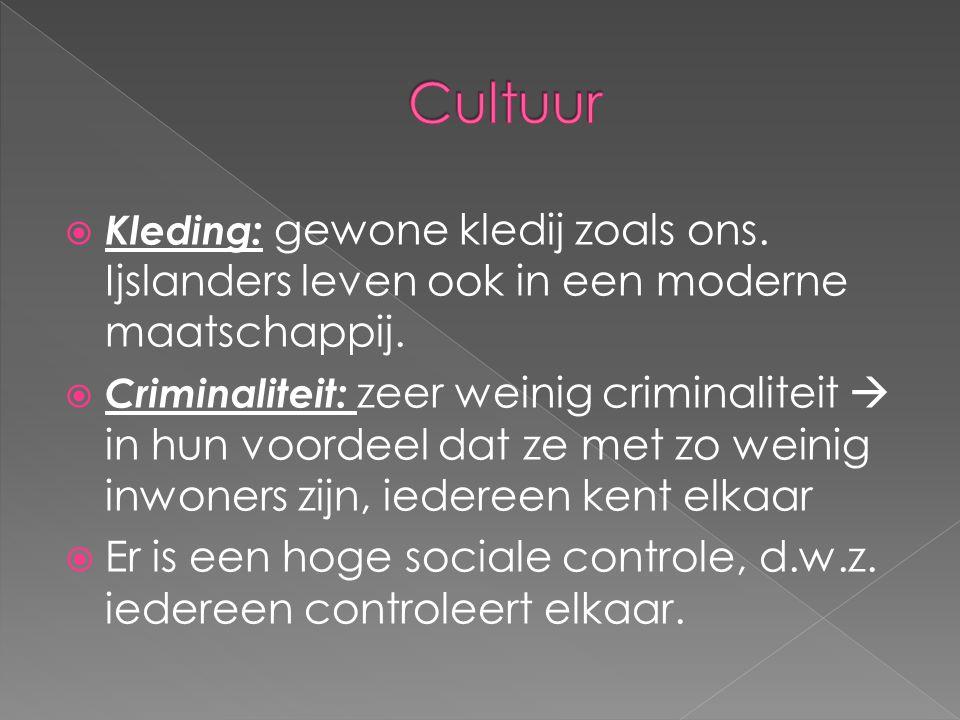 Cultuur Kleding: gewone kledij zoals ons. Ijslanders leven ook in een moderne maatschappij.