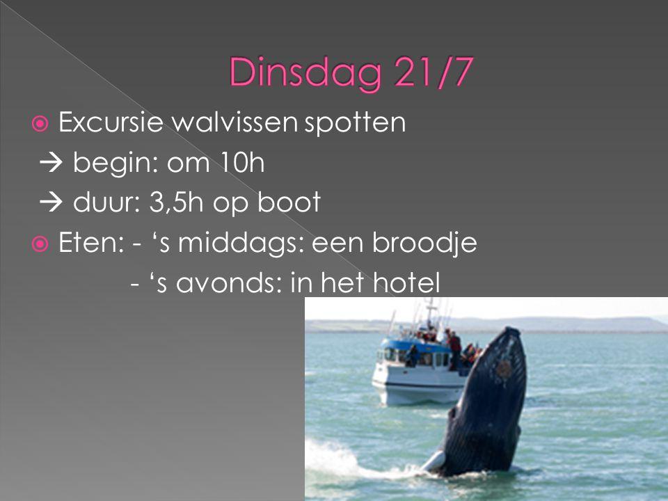 Dinsdag 21/7 Excursie walvissen spotten  begin: om 10h