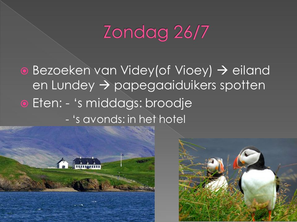 Zondag 26/7 Bezoeken van Videy(of Vioey)  eiland en Lundey  papegaaiduikers spotten. Eten: - 's middags: broodje.