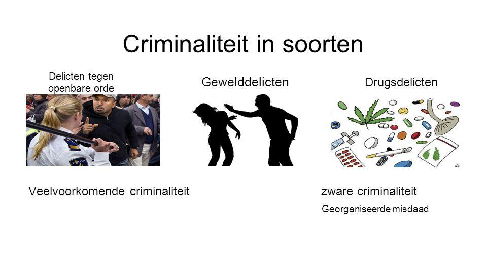 Criminaliteit in soorten