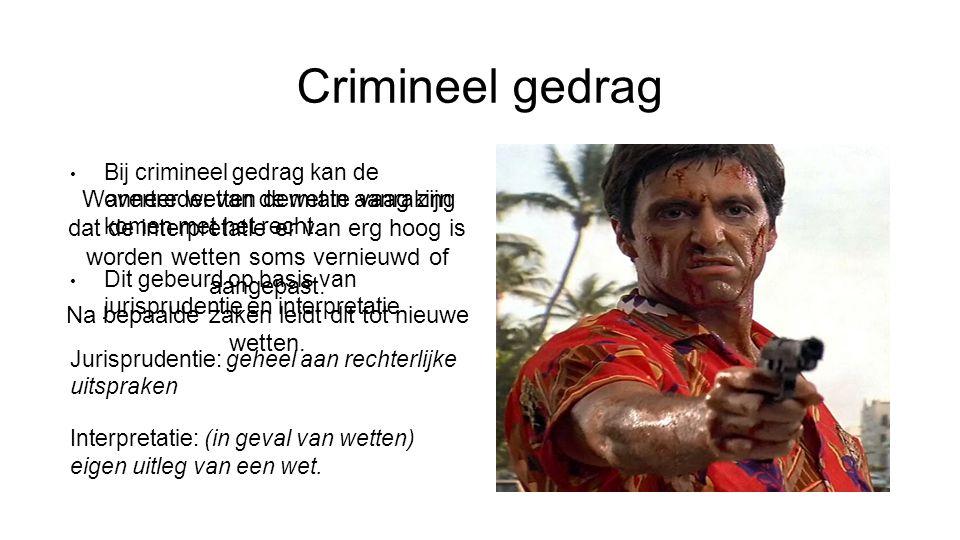 Crimineel gedrag Wanneer wetten dermate vaag zijn