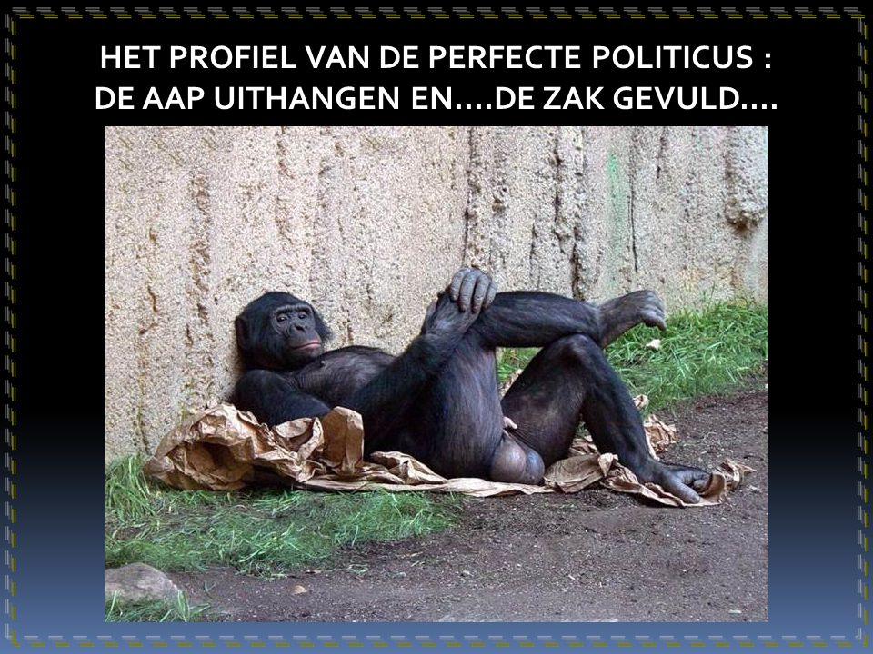 HET PROFIEL VAN DE PERFECTE POLITICUS :