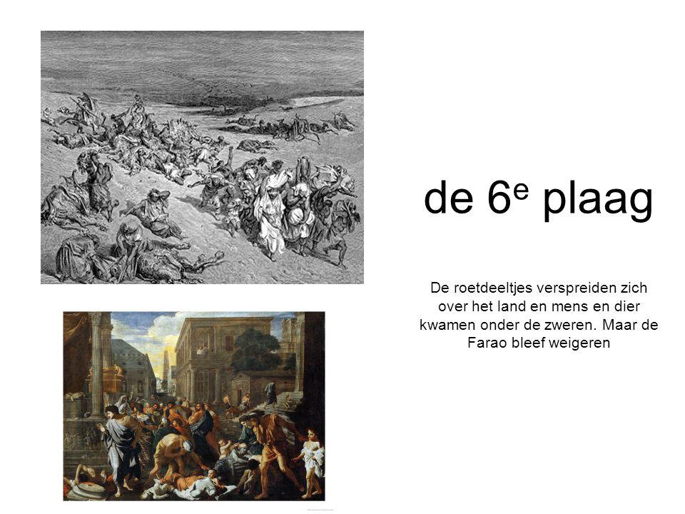 de 6e plaag De roetdeeltjes verspreiden zich over het land en mens en dier kwamen onder de zweren.