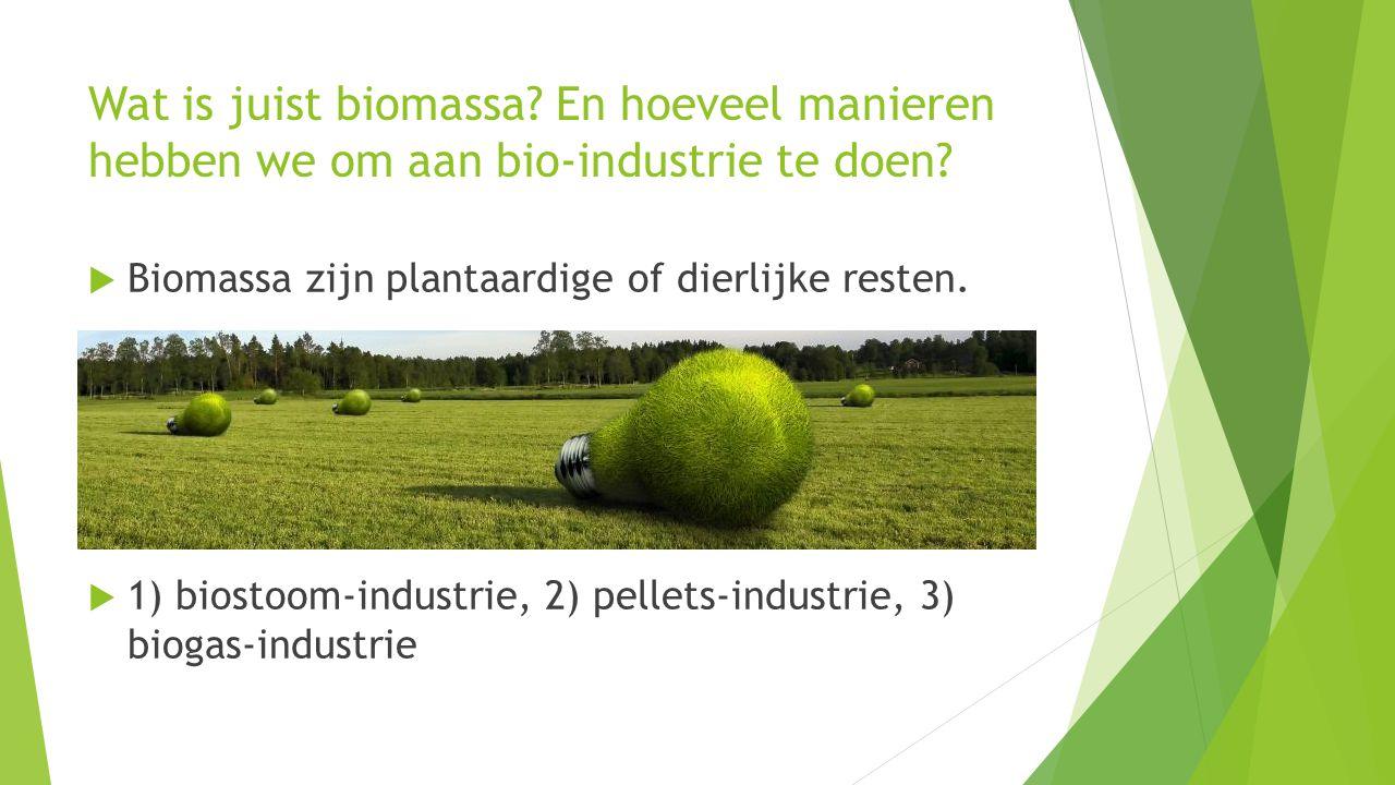 Wat is juist biomassa En hoeveel manieren hebben we om aan bio-industrie te doen