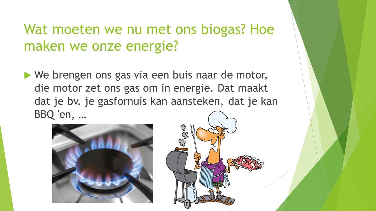 Wat moeten we nu met ons biogas Hoe maken we onze energie