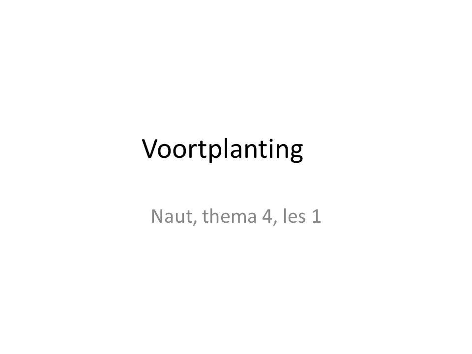 Voortplanting Naut, thema 4, les 1
