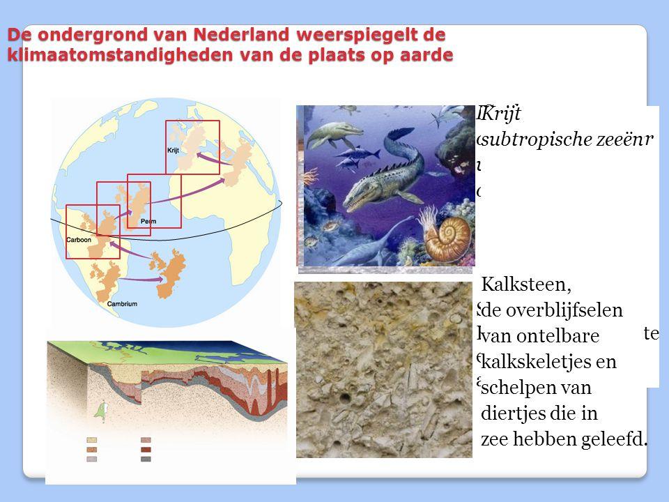 Perm Krijt Carboon Perm ondiepe zeeën onder subtropische zeeën