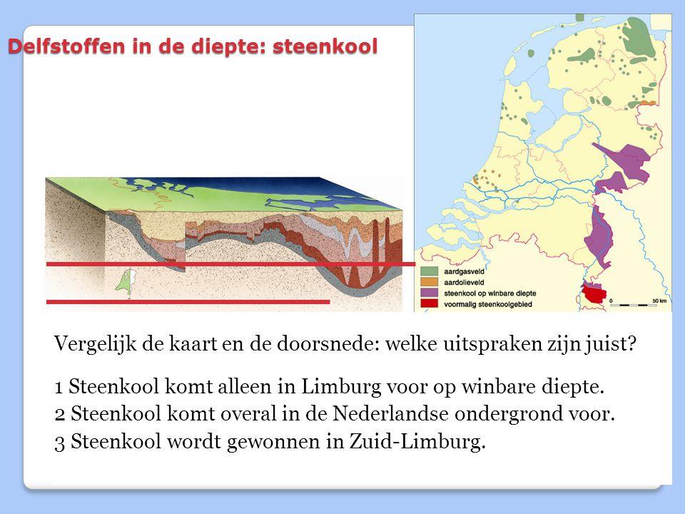 Delfstoffen in de diepte: steenkool