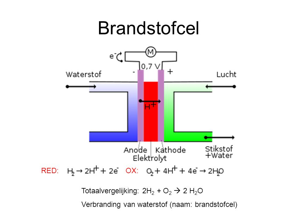 Brandstofcel RED: OX: Totaalvergelijking: 2H2 + O2  2 H2O