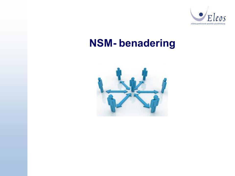 NSM- benadering