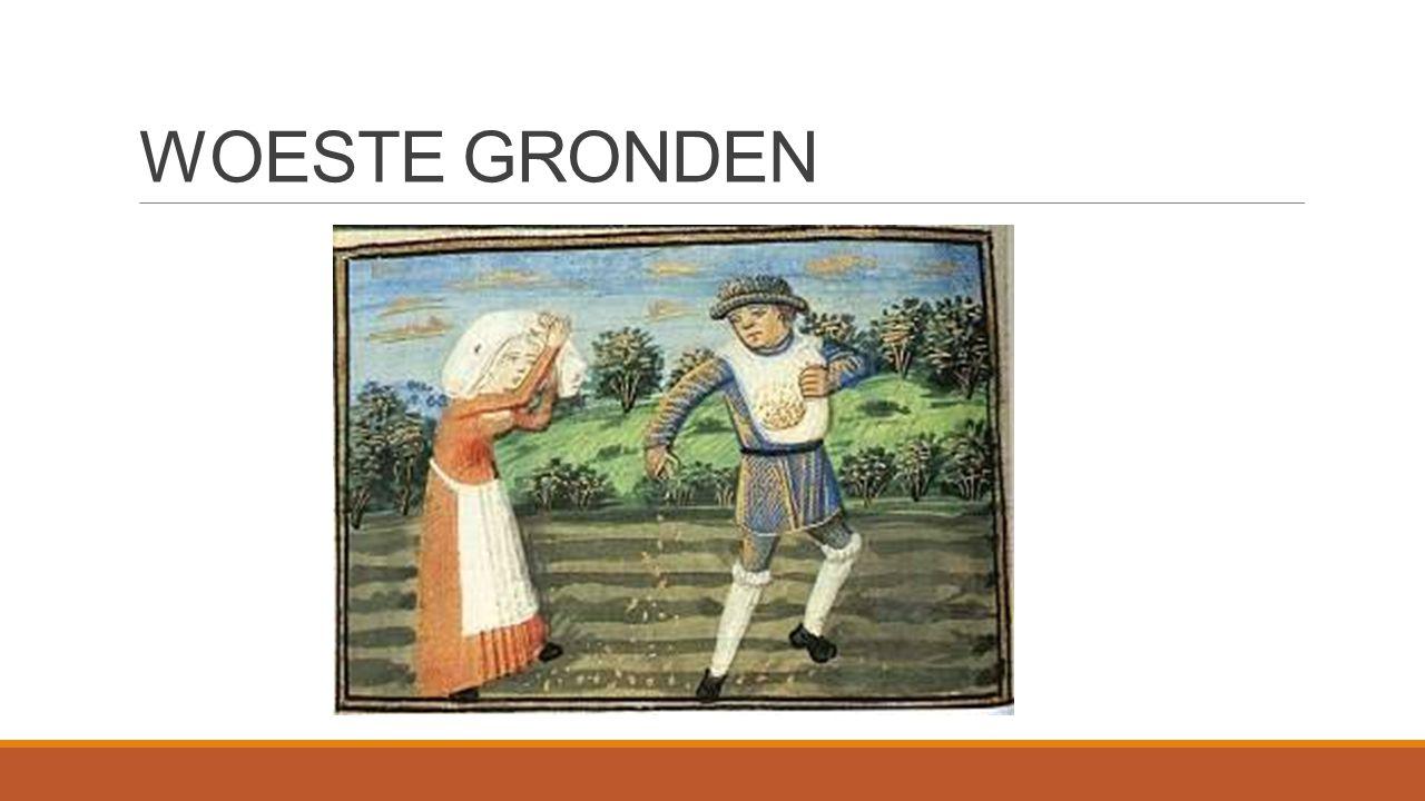 WOESTE GRONDEN