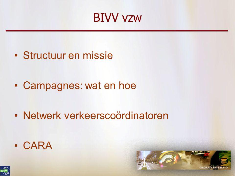 BIVV vzw Structuur en missie Campagnes: wat en hoe