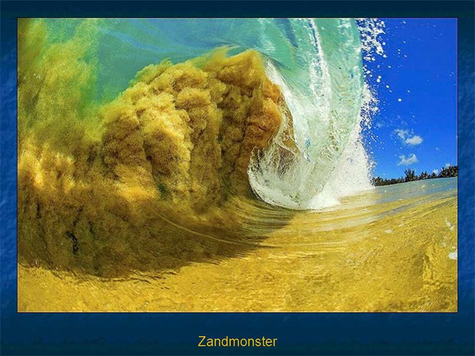 Zandmonster