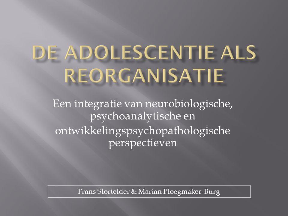 De adolescentie als reorganisatie
