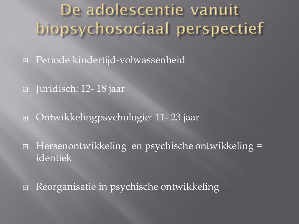 De adolescentie vanuit biopsychosociaal perspectief