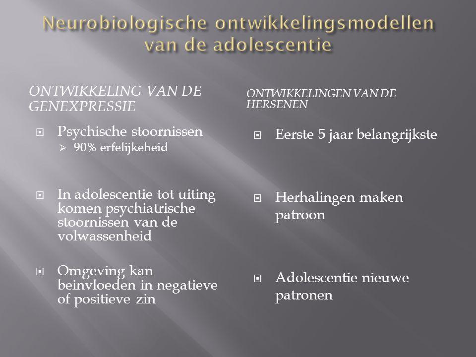 Neurobiologische ontwikkelingsmodellen van de adolescentie