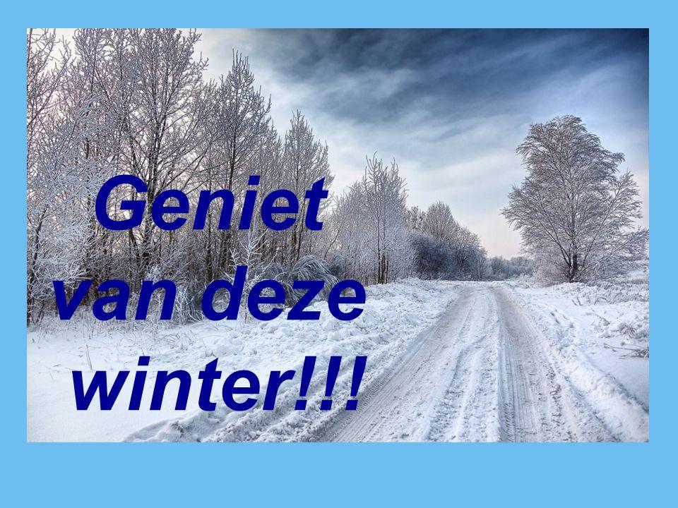Geniet van deze winter!!!