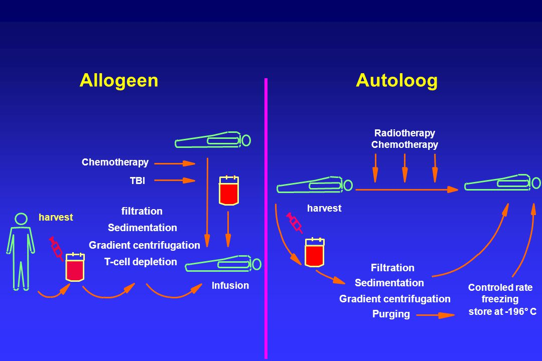 Allogeen Autoloog filtration Sedimentation Gradient centrifugation