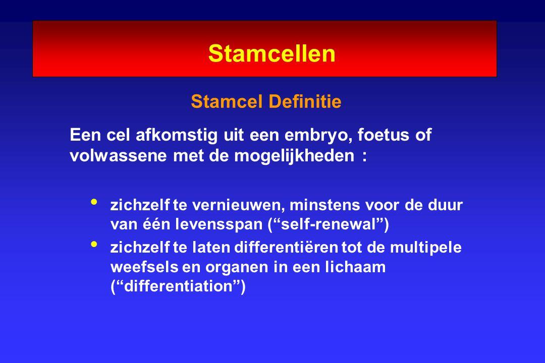 Stamcellen Stamcel Definitie