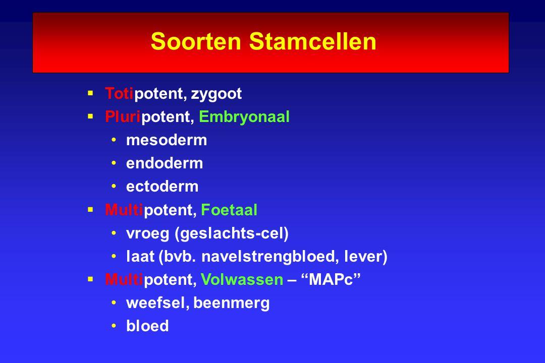 Soorten Stamcellen Totipotent, zygoot Pluripotent, Embryonaal mesoderm