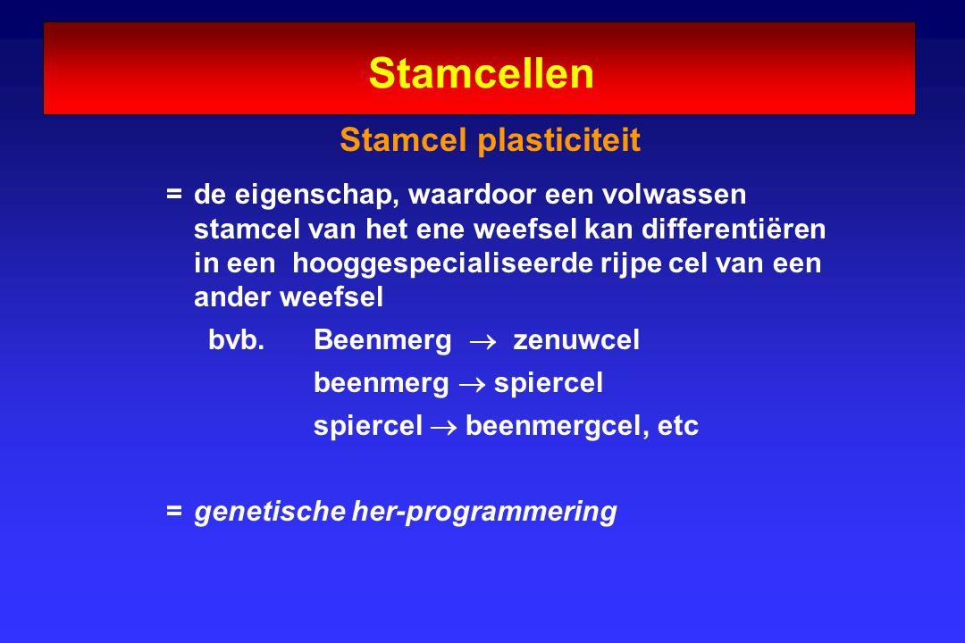 Stamcellen Stamcel plasticiteit