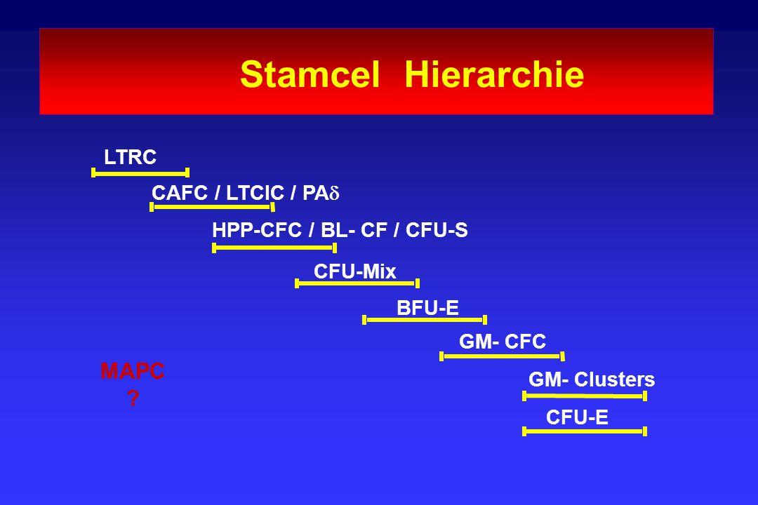 Stamcel Hierarchie MAPC LTRC CAFC / LTCIC / PAd
