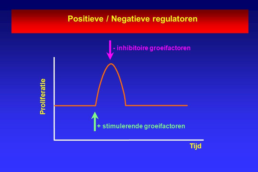 Positieve / Negatieve regulatoren