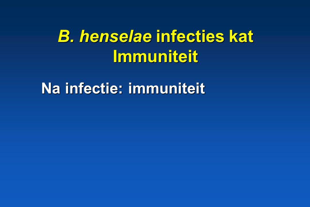 B. henselae infecties kat Immuniteit